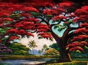 JAMES GIBSON, Royal Poinciana